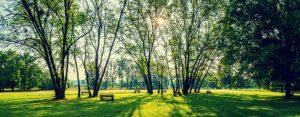 Parks in Bulgaria