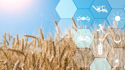 保加利亚政府计划提供8.5亿欧元农业专项资金