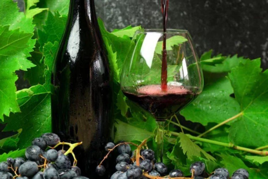 Износа на българско вино в Китай е с ръст от 21.14%